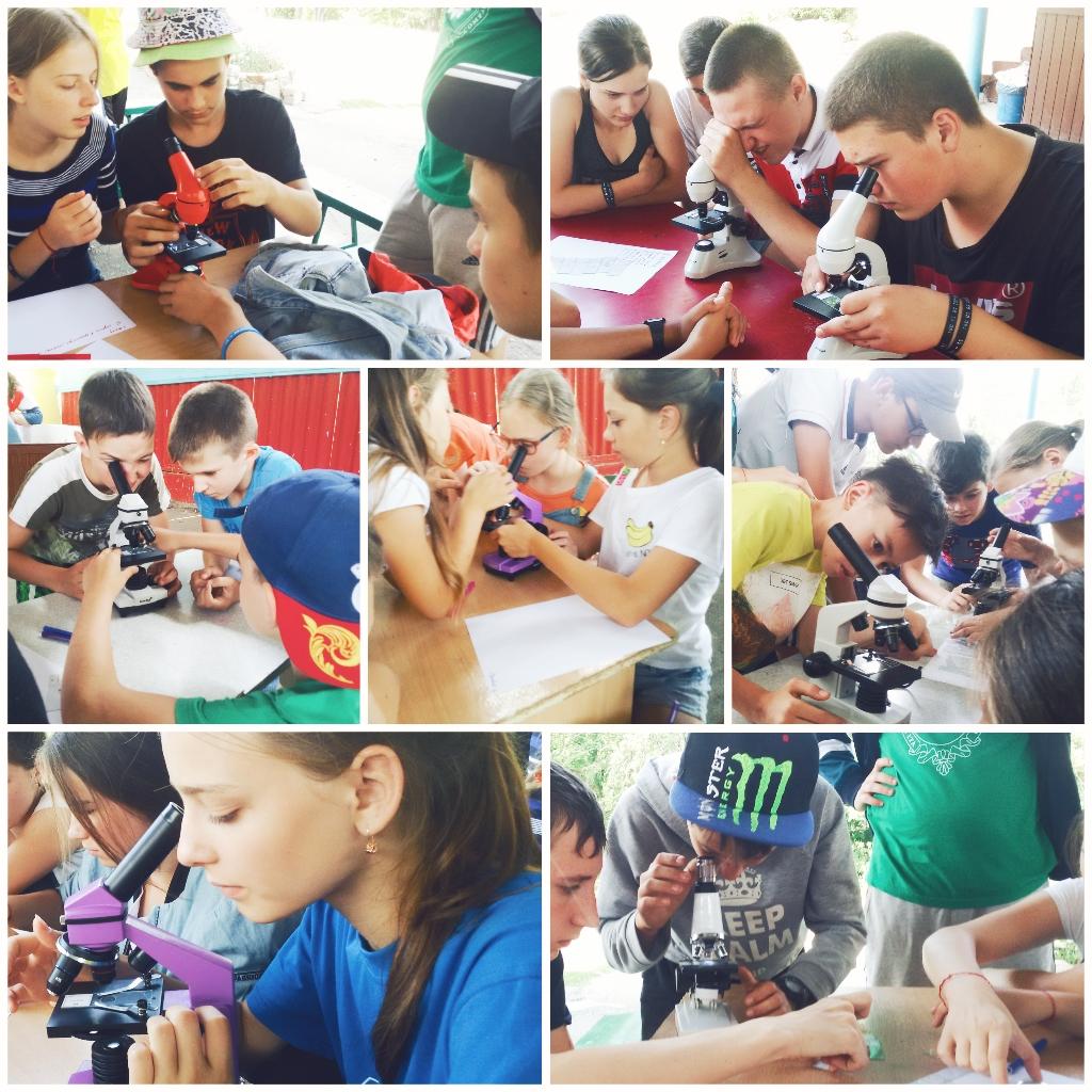 работа с микроскопами