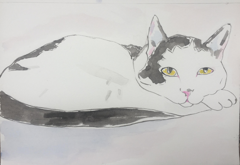 watercolor 29