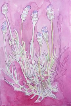 watercolor 19