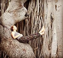My pic in tree.jpg