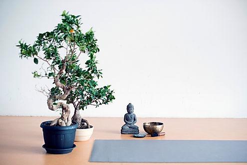 A little 'zen corner' in a yoga class. .