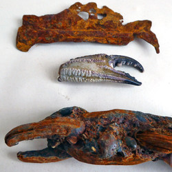 Crab claws, rust and real