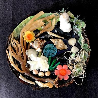 Seaweed plate.jpg