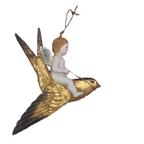 Cherub on a Swift