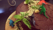 Paleo Double Layer Chocolate Cake - Plus FREE Birthday Cake e-cookbook.