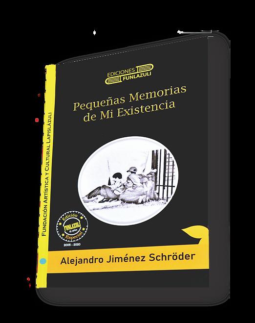 Pequeñas memorias de mi existencia