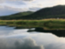 Swan River shore 3.jpg