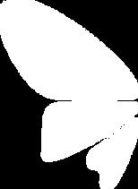 osteopathie-lehel.png
