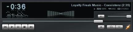 Loyalty_Freak_Music_-_31_-_Coexistenz.mp