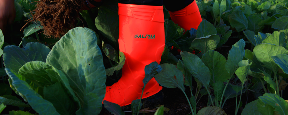 5 PPE for Agriculture