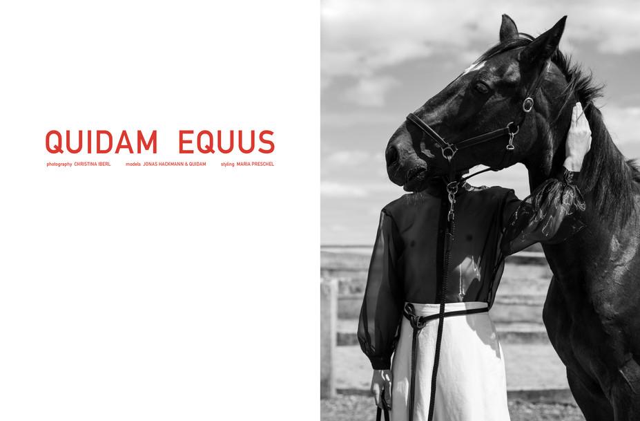 quidam_equus_FOTO-christina-iberl.jpg