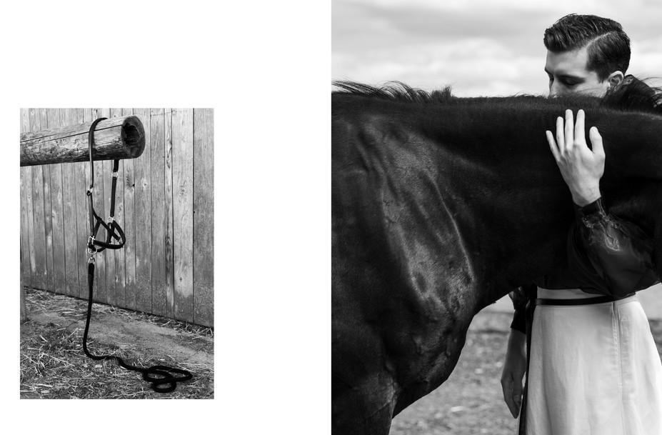 quidam_equus_FOTO-christina-iberl7.jpg