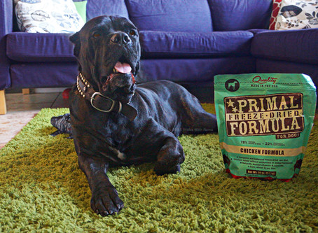 Our Primal Freeze Dried Raw Dog Food Review