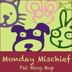 c0867-bloghop