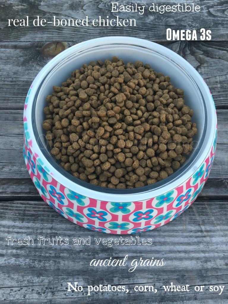 bowl of merrick dog food
