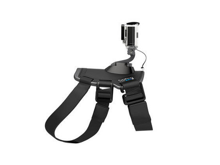Thursday Barks & Bytes & Thoughtless Thursday–Trying Out The GoPro Fetch Dog Harness