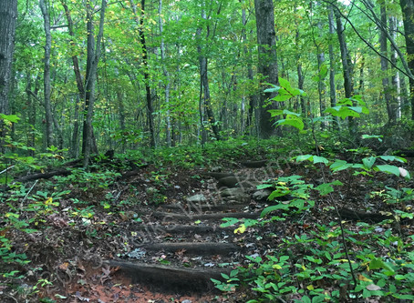 Our Appalachian Trail Adventure–Part 2