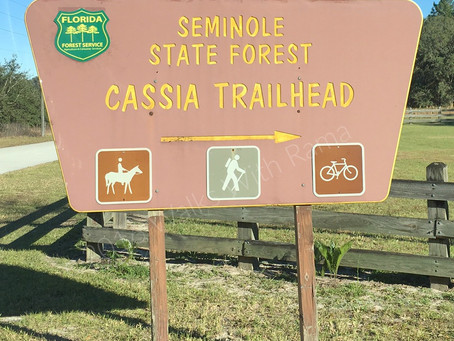 Why It's Worth Checking Out The Florida Trail