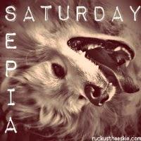 sepia_saturday_blog_hop_badge_200