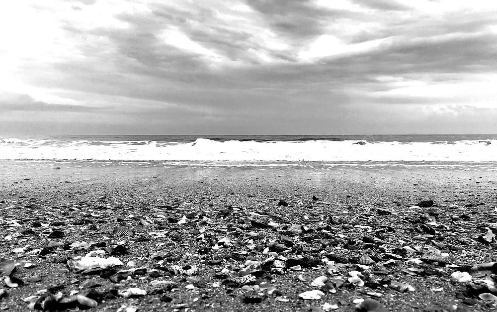 beach black and white photo