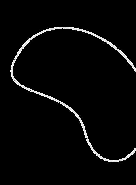 vector-4line4.png