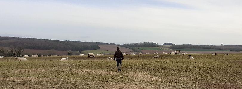 Philip in the field (2).jpg