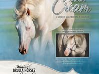 Dun Splash of Cream