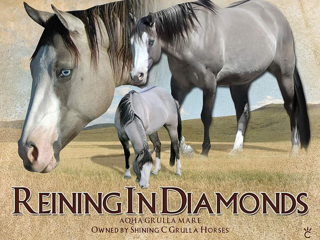 Reining In Diamonds