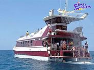 Royal Delphin.png