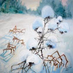 Снежное 50х50