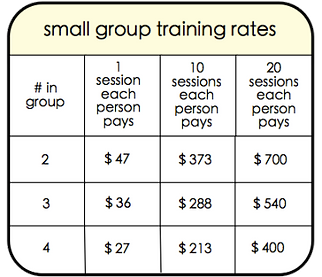 small group training rates