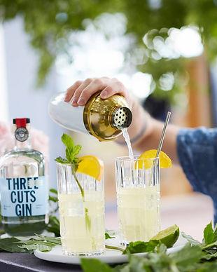 Three Cuts Gin
