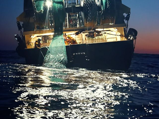A still from Seaspiracy: A large, industrial fishing boat at night is pulling in an enormous net full of fish, its bright light shining out across the surface