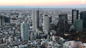 Thành phố Tokyo nhìn từ trên cao