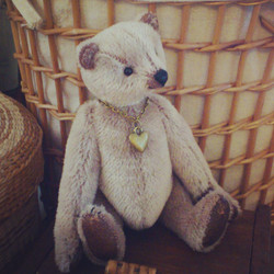 Dear Old Teddy - I have been adopted