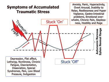 Conceptual description of the autonomic nervous system undergoing a traumatic state