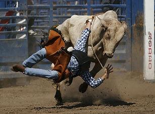 bullriding.jpg
