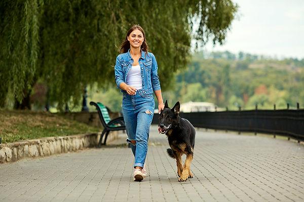 Dog-Versus-Security-System-Woman-Walking