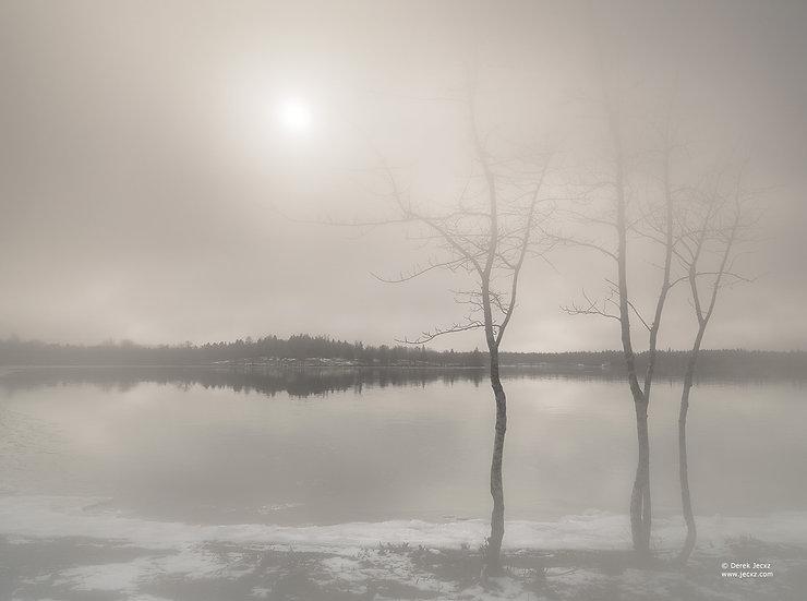 Fog Sun