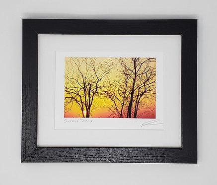 Sunset Trees 9x11