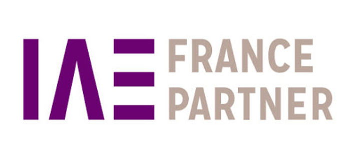 logo IAE FR PARTNER.jpg