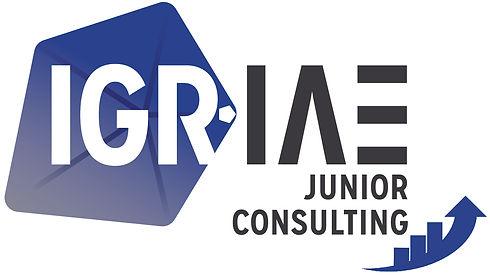 IGR-JUNIOR-CONSULTING.jpg