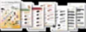 Apricore AG Haarbürsten Katalog 2020/21