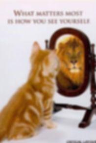 kitten is a lion mirror.jpg