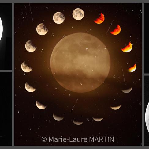 🌚 Cycle de Lune : Dimanche 21 juin au Dimanche 19 Juillet 🌝
