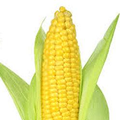 Corn (Local Yellow)