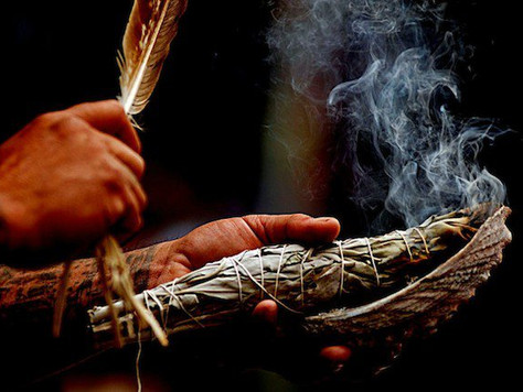 Sage Smudging clears up to 94% of aerial bacteria within 1 hour!