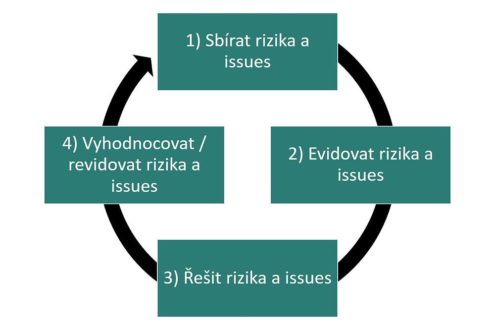 risk management process, issue management