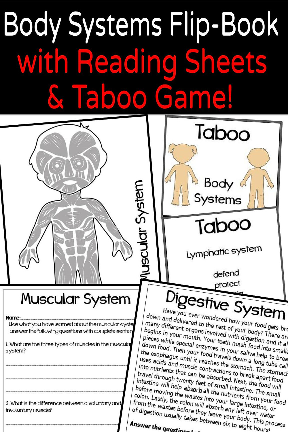 Human Body Systems Activity 3rd 4th 5th 6th