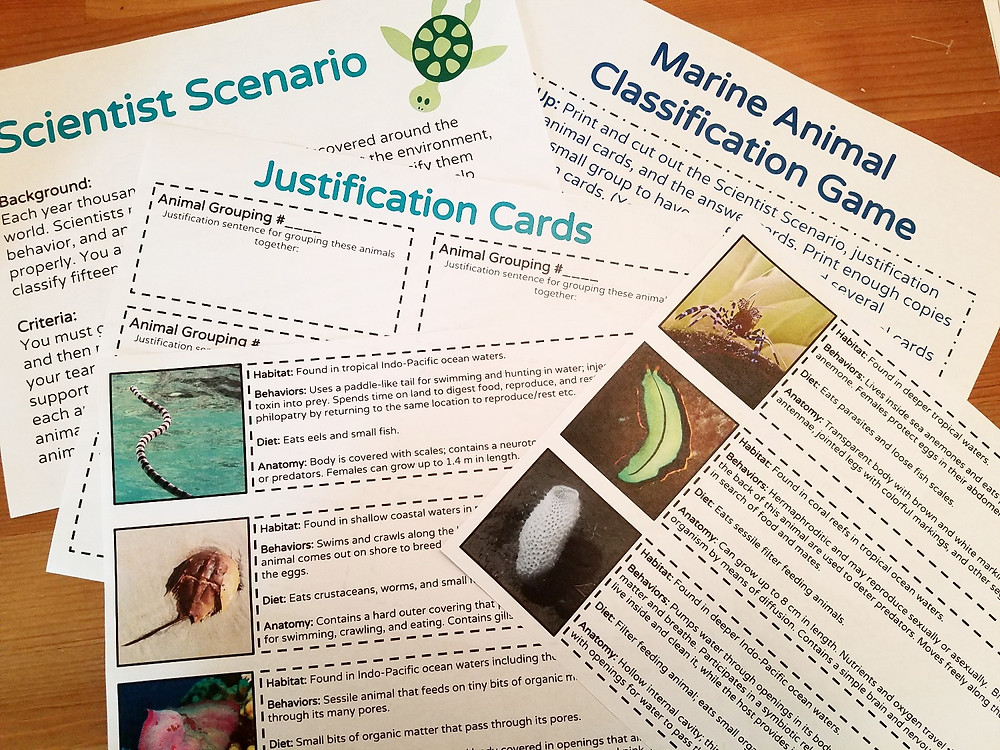 Marine Animal Classification Game